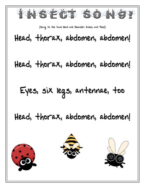 insects for kindergarten insect song school kindergarten pinterest insects