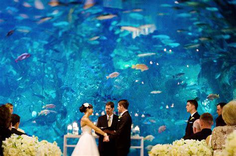 wedding reception new aquarium 5 unique wedding venues