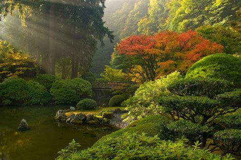ninbra japanese garden portland oregon