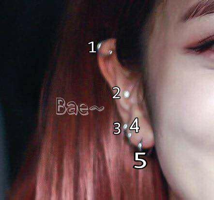 blackpink earrings ear piercings for girls allkpop forums