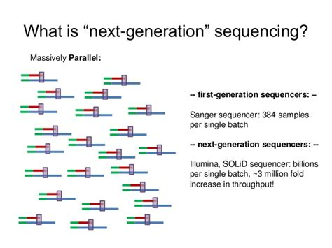 The Templates For Next Generation Sequencing Are Flash Card by Next Generation Sequencing Format And Visualization With