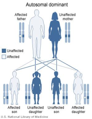growth pattern en francais albright s hereditary osteodystrophy wikipedia