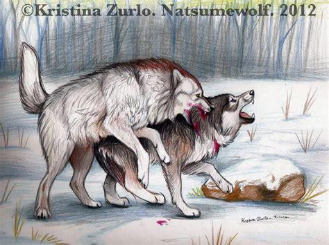 Females Wolf Boy 1 17t alpha fight by natsumewolf on deviantart