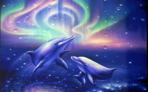 download beautiful dolphin for android appszoom