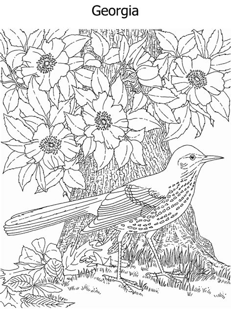 georgia state coloring pages coloring pages