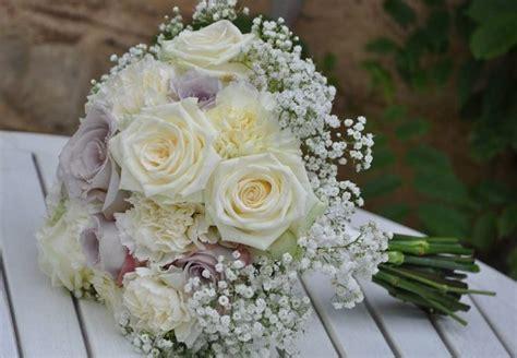 velo da sposa fiore velo di sposa piante perenni pianta velo di sposa