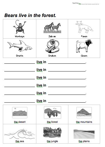printable worksheets about animal habitats bears live in the forest animal habitats worksheet