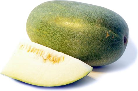 japanese winter melon information recipes and facts