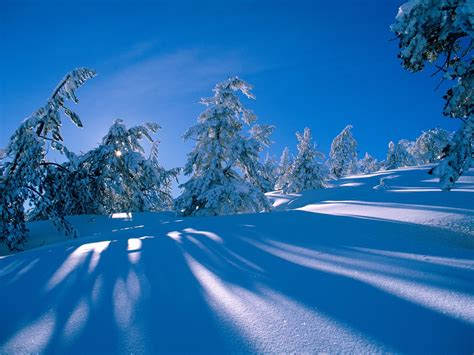 desktop themes snow best desktop hd wallpaper snow desktop wallpapers