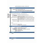 CV Avis Sur Mon Cv Aide Pour Le Pr&233senter
