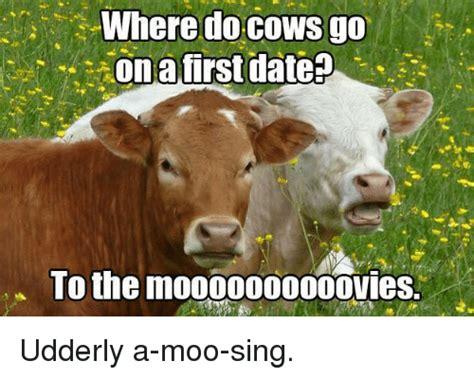 Moo Meme - where do cows go on a first date tothe moooooooooovies