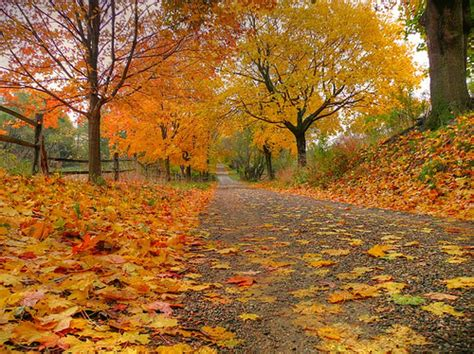 40 crazy awesome autumn pictures