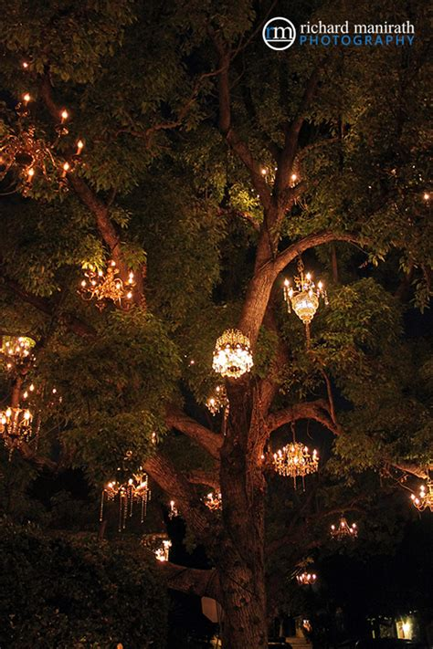 adam tenenbaum s chandelier tree in los angeles silver