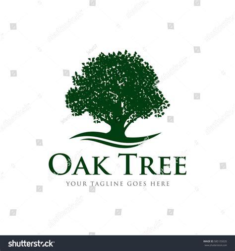 oak tree template oak tree concept logo icon vector stock vector 585155020