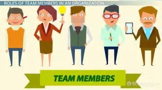 team members in an organization roles responsibilities