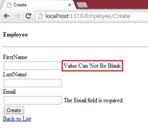 email format validation mvc server side required field validator sle in mvc day 27