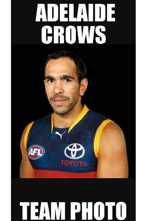 the funniest crows and power memes after round 8