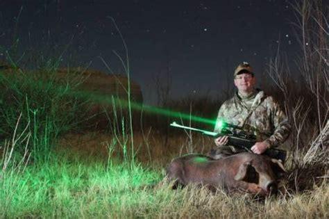 replacement lights for deer replacement lights for deer 100 images lighted deer
