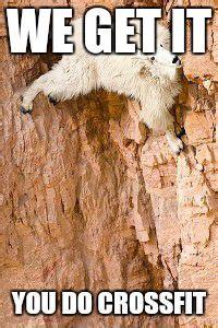 Rock Climbing Memes - goat rock climbing imgflip
