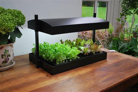 grow light garden