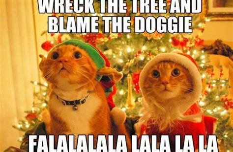 Cat Christmas Tree Meme - cat wrecks christmas tree funny pictures quotes memes