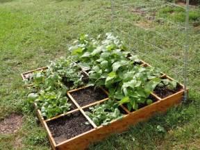 pin backyard vegetable garden design 10 backyard vegetable