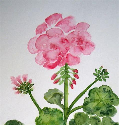 geranium flower painting image paint color domain pictures free pictures