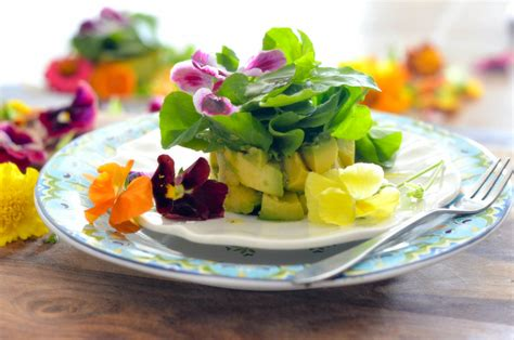 flower food avocado and watercress salad with edible flowers karista s kitchen