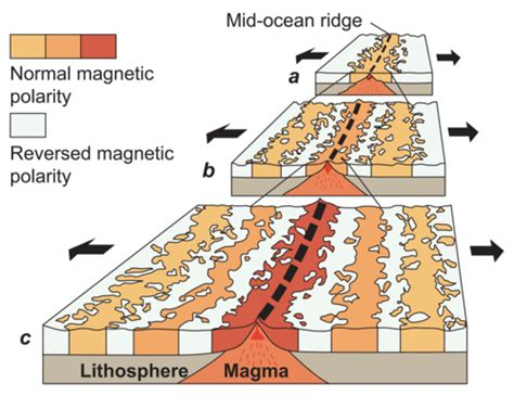 pattern of magnetic reversal magnetic evidence for seafloor spreading read earth