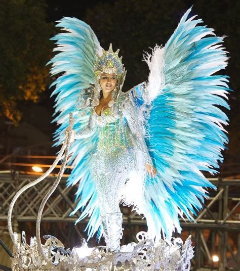 5 themes of geography rio de janeiro best 25 brazil costume ideas on pinterest rio carnival