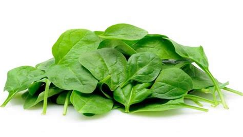 Spinach In Stool by 25 Home Remedies For Constipation In Adults And Children