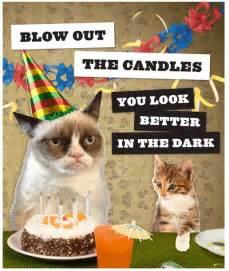 happy 2nd birthday grumpy cat grumpy cat