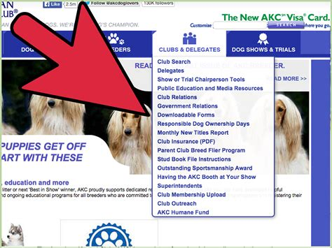 akc names how to change an akc s name 8 steps with pictures