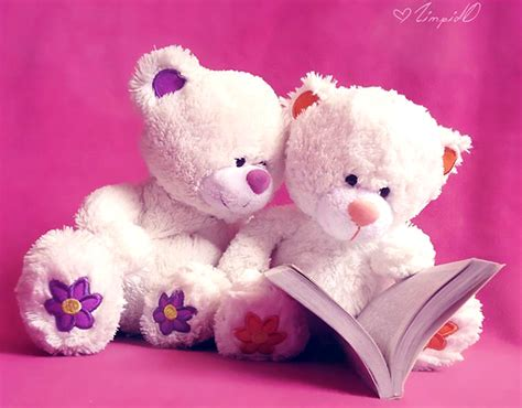 wallpaper cute teddy teddy bear hd wallpapers