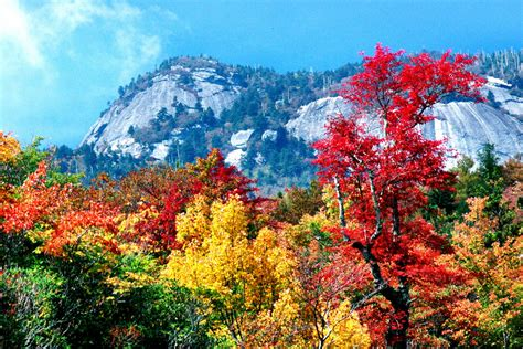 carolina fall colors this year s fall foliage season has potential to be the