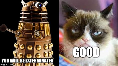 Doctor Who Cat Meme - grumpy cat doctor who 2 imgflip