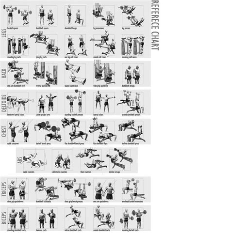 weight bench workout chart weight lifting chart for beginners workout chart home