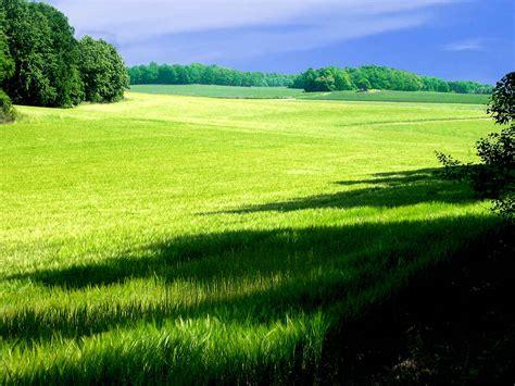 fil s 246 dermanland landscape jpg wikipedia