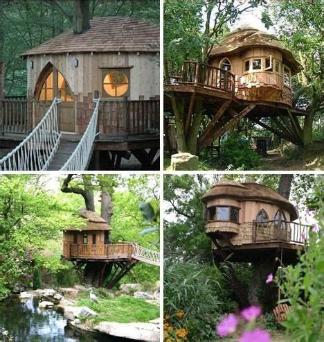 really cool tree houses cool tree house tree house pinterest
