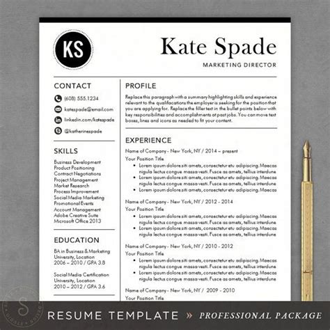 Professional Looking Resume Template by Professional Resume Template Cv Template Mac Or Pc For