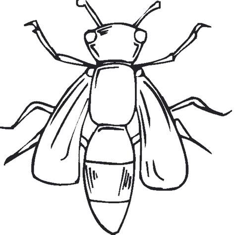 imagenes para colorear de xv años im 225 genes para colorear de insectos im 225 genes para dibujar