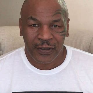 Mike Tyson Arrest Records Rhymes With Snitch And Entertainment News Mike Tyson Denied Entry To Chile