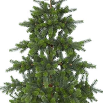 christmas trees and wreaths star trading