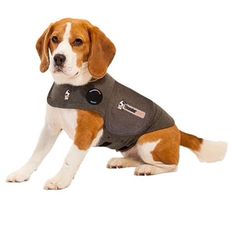 dogs with anxiety thundershirt anxiety shirt anxiety