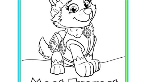 paw patrol blank coloring pages to print nick jr paw patrol printable coloring pages free coloring