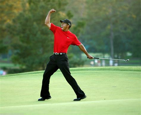 woods a celebration tiger woods 8 x 10 photo 458 15 ebay