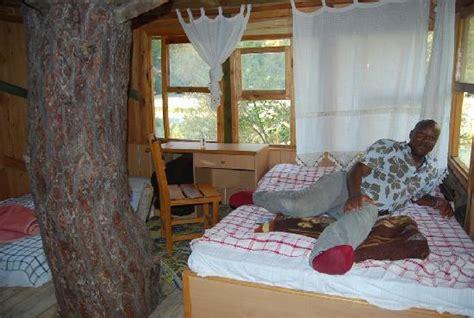 things to do in side your house inside tree house hotel room picture of saklikent milli parki fethiye tripadvisor
