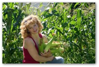 growing corn in your backyard how to grow sweet corn in your vegetable garden