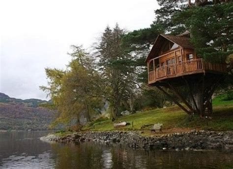 best tree houses in the world top 10 most amazing tree houses around the world
