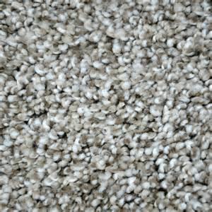 home depot carpet warranty lifeproof carpet sle true classic ii color drayton